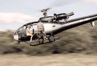 Собаки-парашютисты борются с браконьерами: видео